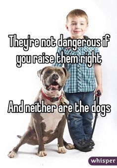"""""""They're not dangerous if you raise them right And neither are the dogs"""""""