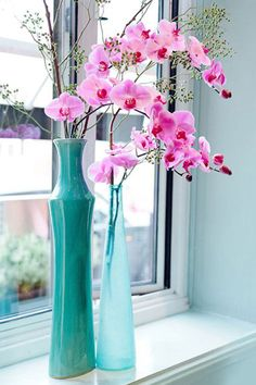 pink orchid in turquoise vases