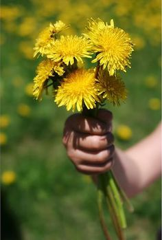 """A rose can say """"I love you"""",  orchids can enthrall,  but a weed bouquet in a chubby fist,  yes, that says it all.  ~Author Unknown"""