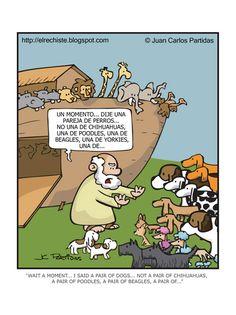 Un momento… dije una pareja de perros… no una de chihuahuas, una de poodles, una de beagles, una de yorkies, una de …