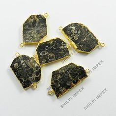 Pretty 5Pc! Brass Gold Electroplated Natural Turritella Wholesale Lot Connectors #Shining_Gems #Shining_Gems #Connectors #Jewelry #gemstone