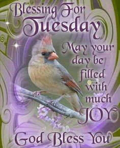 Tuesday Blessing