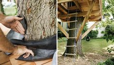Tree House Plans - How to Build a Backyard Tree House - Popular Mechanics. You are never too old for a tree house! Backyard Treehouse, Building A Treehouse, Backyard Trees, Build A Playhouse, Backyard For Kids, Backyard Projects, Treehouse Ideas, Backyard Zipline, Backyard Playground