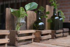 Incluye botella y la planta.  Encontrá Portamaceta desde $120. Living, Jardín y más objetos únicos recuperados en MercadoLimbo.com. Wine Rack, Gardening, Furniture, Home Decor, Ideas, Gardens, Objects, Plants, Highlights