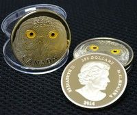 Wish | 2014 Royal Canada 250 Dollar Gold Plated Coin 1OZ 999/1000 Snowy Owl Metal Souvenir Coin (Size: 40mm*3mm, Color: Gold)