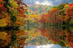 Beavers Bend State Park, Oklahoma.....I might have to find this place. It looks like home in the fall...Michigan.