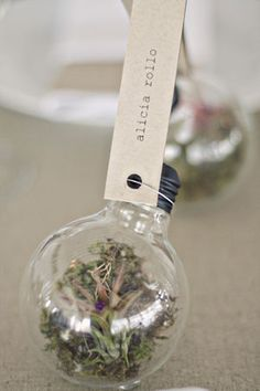 DIY lightbulb placecards