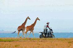Everyday Africa