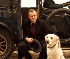 Roly, the original Downton Abbey Labbie with Lord Grantham played by Hugh Bonneville