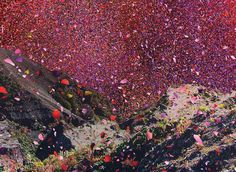 Millions of flower petals erupt from a volcano, covering an entire village in Costa Rica -Photos and videos by Travel Vibes➹ ( Costa Rica, Beverly Hills, Flower Petals, Flowers, New York, Portrait, Beautiful World, Beautiful Things, Scenery