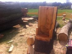 Simple oak bench, cedar chair and first mushroom - Arbtalk.co.uk | Discussion Forum for Arborists