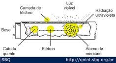 Principais constituintes de uma lâmpada fluorescente