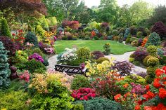 Farewell to the beautiful azalea flowers (May 29) by Four Seasons Garden, via Flickr