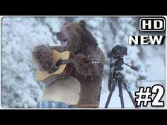 ▶ Huge Bear Surprises The Film Crew At Samsung EcoBubble Washing Machine Shoot - YouTube