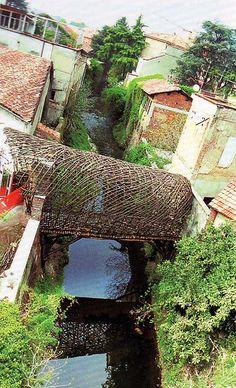 Passerella dei Gelsomini sul fiume perduto | Giuliano Mauri
