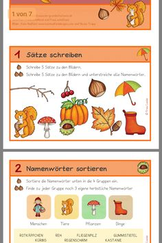 Herbstliche Sätze schreiben You are in the right place about Education Level infographic Here we off World Languages, Family Planning, Primary School, Classroom Management, Second Grade, Back To School, Infographic, Teaching, Education System