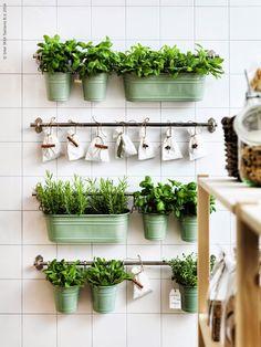 Un lindo diseño para tu propia huerta en la cocina