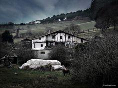Berango Caserio
