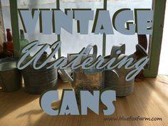 Vintage Watering Cans; galvanized zinc for my junk garden