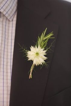 love in the mist and rosemary button hole - picture the nigella with the herb clusters