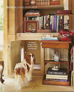 A hidden doggy door inside the cabinetry leads to the outside. This is so clever! ~ Petit Chateau: October 2011