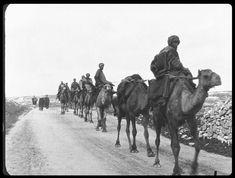 Lumière en Palestine 1897 - JFW 2018 - 26.03.- 18:30 Uhr Metro Kino Palestine, Camel, Israel, Animals, World War, History Of Film, New Movies, Film Festival, Animales