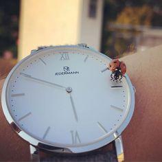 Wir sind noch immer geschockt von der Nachricht die uns vor kurzem ereilt hat dass VW den Beetle mangels Nachfrage einstellt. Wir finden den Beetle echt schön vor allem in Rot Schwarz und verstehen die Welt nicht mehr.  . . . . . . #jedermann #jedermann_watches #Beetle #beetles #beetlejuicebeetlejuicebeetlejuice #beetlejuicecostume #beetlegeuse #beetleturbo #beetlelove #beetlebug #beetletattoo #beetlecam #beetlehouse #beetlesofinstagram #beetlejuicecosplay #BeetlesBugsButterflies… Le Tattoo, Beetlejuice, Watch Brands, Clock, Instagram, Home Decor, Red Black, World, Nice Asses