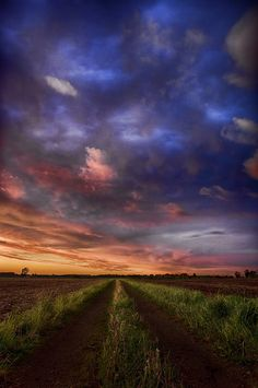 Sunset Lane by Michelle Garcia on 500px