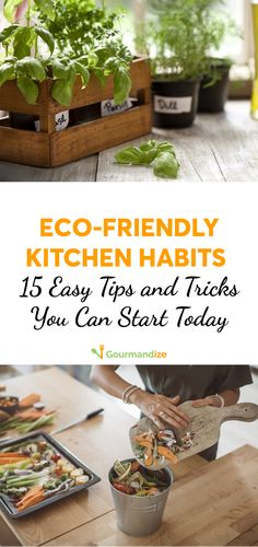 Start going green with some easy steps you can take today.