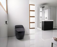 High-Tech-Modern-Toilet-Design-Idea.jpg (1024×850) http://www.jaybean.com/modern-design-toilets-for-your-bathroom/apel-logo-beautiful-modern-toilet-design/  I like the black cylindrical design of this toilet.