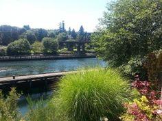 Ballard Locks, Seattle, WA