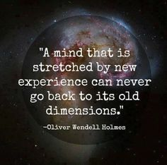 A mind that is stretched by new experience can never go back to its old dimensions.