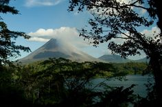 Costa Rica hasn't had to use fossil fuels for its energy once this year, the state-owned utility announced this week.