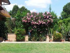 bio-garden