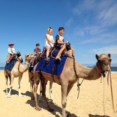 -- LAKES ENTRANCE [WEEKEND] BEACH CAMEL RIDES -- We're on the beach Saturday and Sunday. There's a camel waiting for you  full details @ link in profile  #camelride #camelrides #camellove #australiancamels #camel #LakesEntrance #lakes #loveeastgippy #eastgippy #EasternBeach #eastgippsland #thingstodolakesentrance #tourism #theplacetobe #gooddayforit by australiancamels http://ift.tt/1JtS0vo