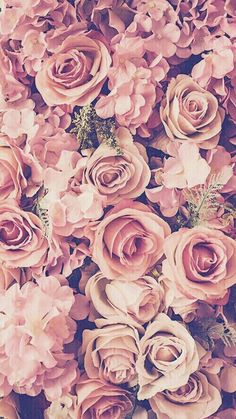 My favorite color .. light pink flowers