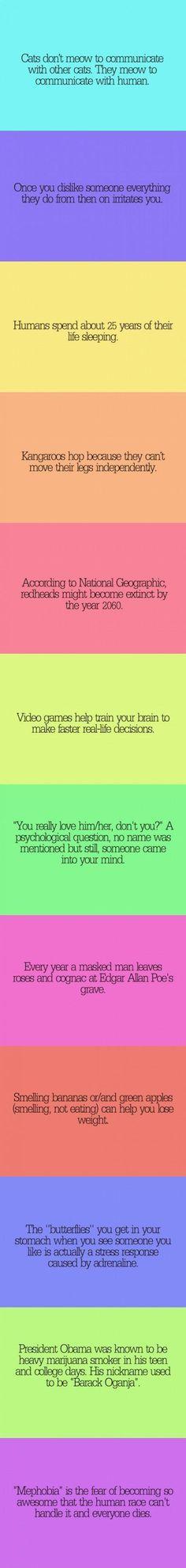 Weird and random facts
