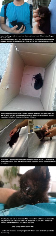 Want To Restore Your Faith In Humanity