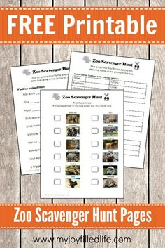 Next time you take a trip to the zoo, be sure to take these printable scavenger hunts along! :: www.thriftyhomeschoolers.com
