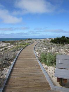 Path to the future at Asilomar, Pacific Grove, CA...