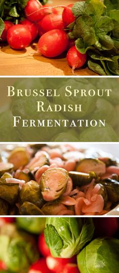 Brussel Sprouts can ferment so nicely. Radishes help the ferment take off in earnest. Asian Recipes, New Recipes, Asian Foods, Superfood, Zucchini Relish, Roh Vegan, Fermentation Recipes, Fermented Foods, Vegetable Recipes