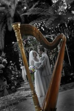 We have a harp at our wedding ahhh