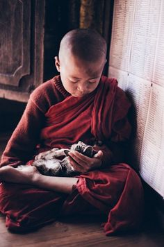 Monk and Cat by FrankAnnatar asia asian birmanie buddha buddhism buddhist burma culture inle lake moine monk myanmar religion rel Crazy Cat Lady, Crazy Cats, Animals And Pets, Cute Animals, Concours Photo, Buddha Buddhism, Buddhist Monk, Cat People, Tier Fotos