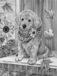Image result for grayscale animal coloring pages