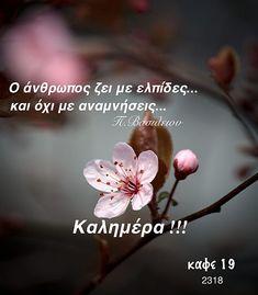 Greek Quotes, Good Morning, Love, Buen Dia, Amor, Bonjour, Bom Dia, Buongiorno, Romances
