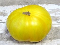 Pork Chop Tomato - grew from http://www.sampleseeds.com seeds in 2014 - amazing tom - must grow 2015 FAV