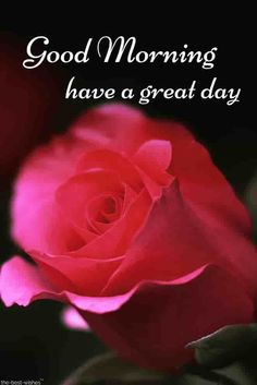 1027 Best Good Morning Have A Nice Day Images In 2019 Good