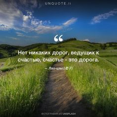 """Laozi (老子) """"There is no path to happiness: happiness is the path."""" Photo by Claudio Testa / Unsplash Proverbs English, Citation Nature, Affirmations Positives, If Rudyard Kipling, Smart People, Motivation, In My Feelings, Laos, Wise Words"""