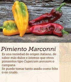 #pimiento #Italia #peppers #cocinasdelmundo #comida