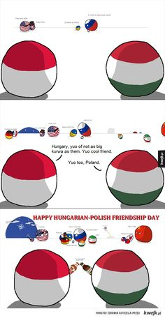 Hungary and Poland are chill Funny Images, Funny Pictures, Polish Memes, Big Friends, History Memes, Country Art, Fun Comics, Stupid Memes, Funny Posts